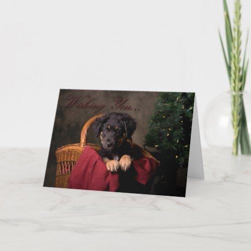 Cute Puppy Christmas Card card
