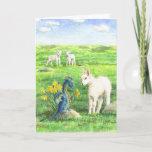 Sweet Daffodils, Dragon & Lambs Spring Card