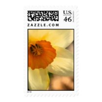 Daffodil Floral US Wedding Postage Stamp