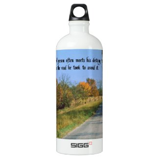 Destiny SIGG Traveler 1.0L Water Bottle