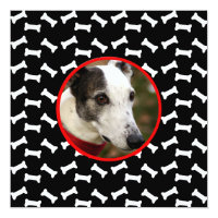 Dog Birthday Party Custom Photo Card