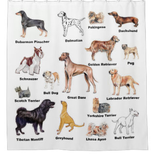 Dog Types Shower Curtain