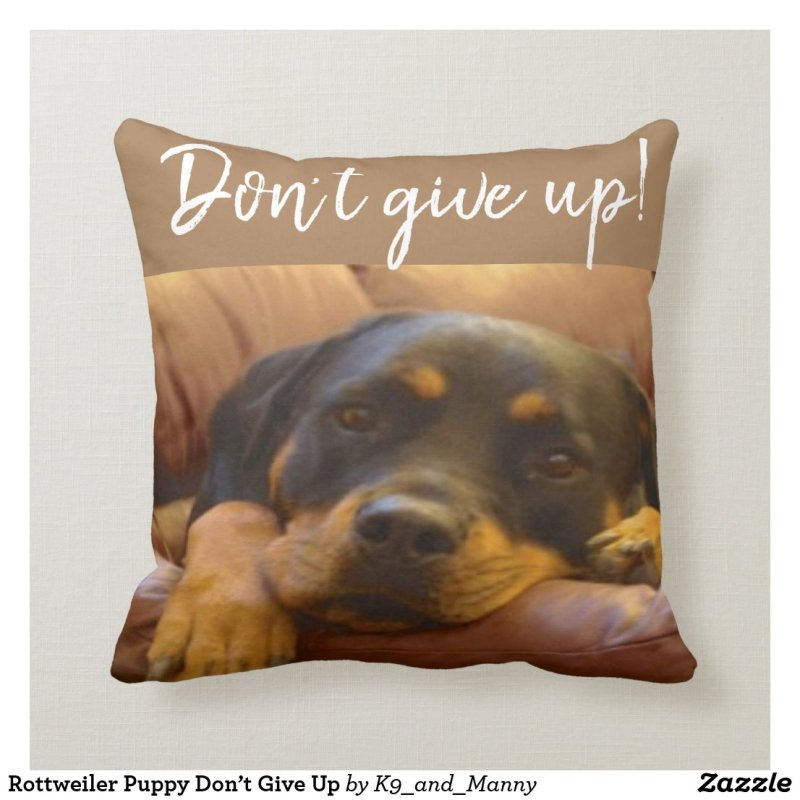 Don't give up! throw pillow