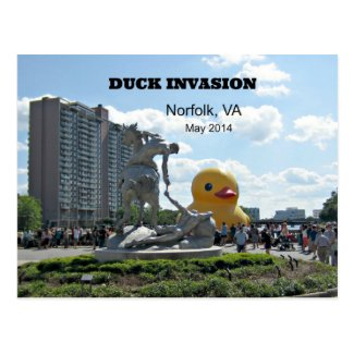 Duck Invasion, Norfolk, VA