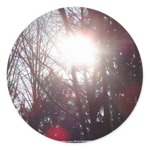 Early Morning Sun Rays #19 sticker