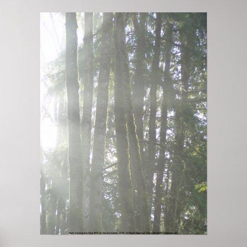 Early Morning Sun Rays #29 print