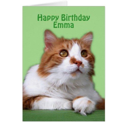 Emma Happy Birthday Orange and White Cat Greeting Cards