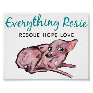Everything Rosie Poster