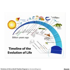 Diagram Of Evolution Timeline 5 3 Ls Coil Pack Wiring Life On Earth Postcard