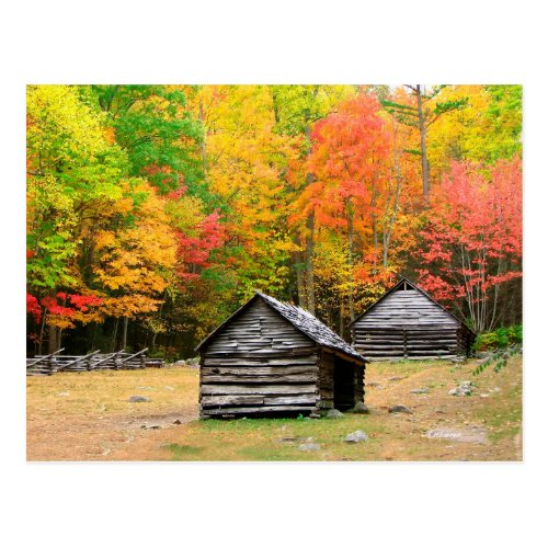 Fall in the Great Smoky Mountains Postcard