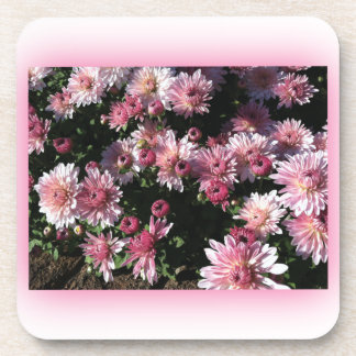Fall Mums At Sunset Beverage Coaster