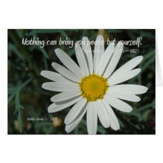 Famous Words: Peace - White Daisy Card Series (7)