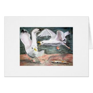 Fighting Seagulls card