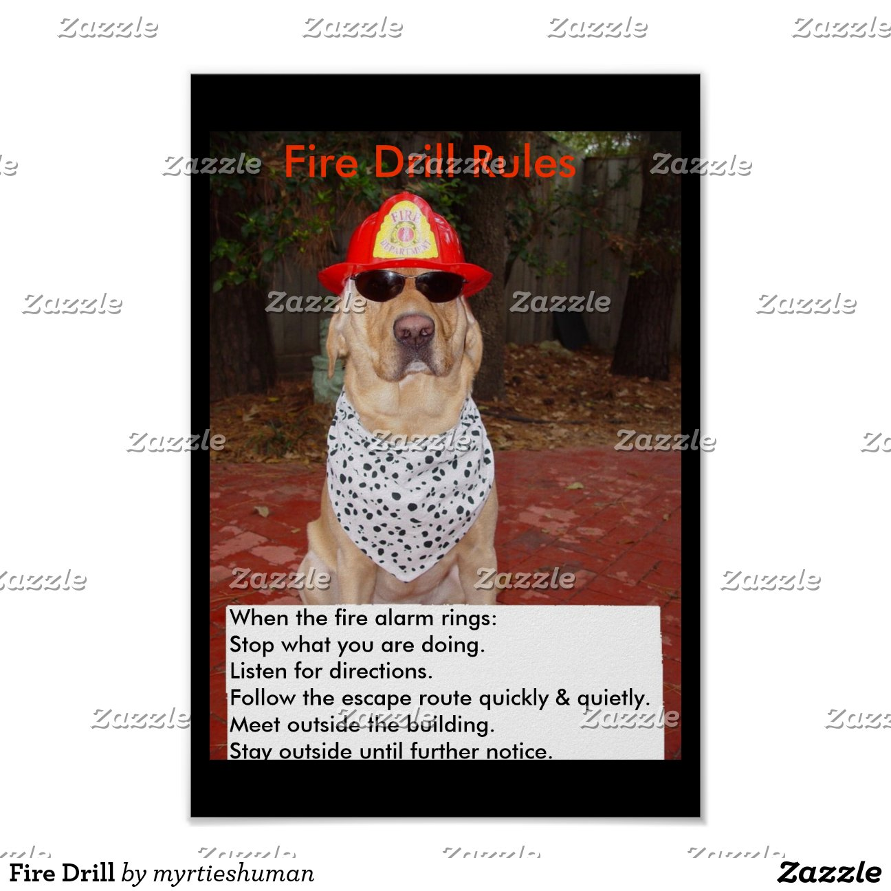Fire Drill Poster-rc4cae00b35cd4a9f8110522962846830 2jm2