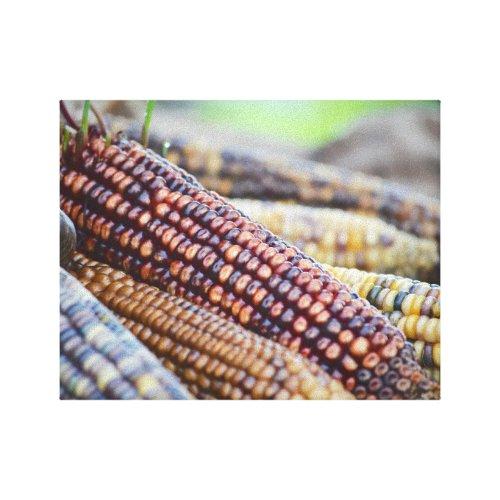 Flint Ornamental Corn Canvas Print