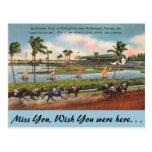 Florida, Hallendale, Gulfstream Park Postcard