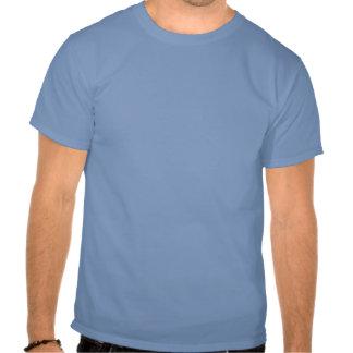 Florida Hibiscus Pink & Blue Tee Shirts