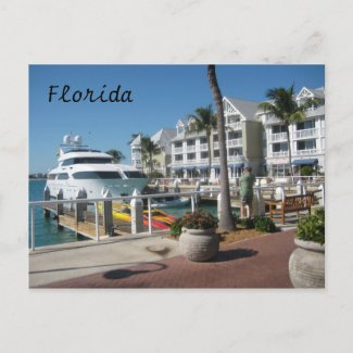 Florida postcard postcard