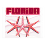Florida Starfish postcards