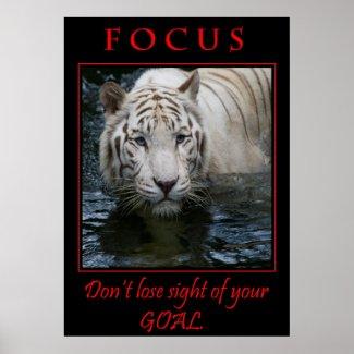 Focus Motivational Poster
