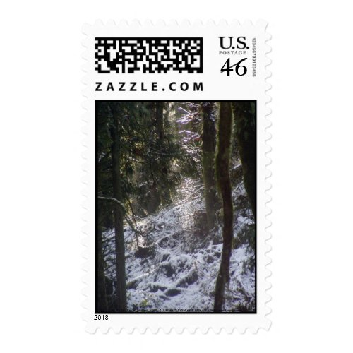 Forest Sun Rays in the Snow #24 stamp