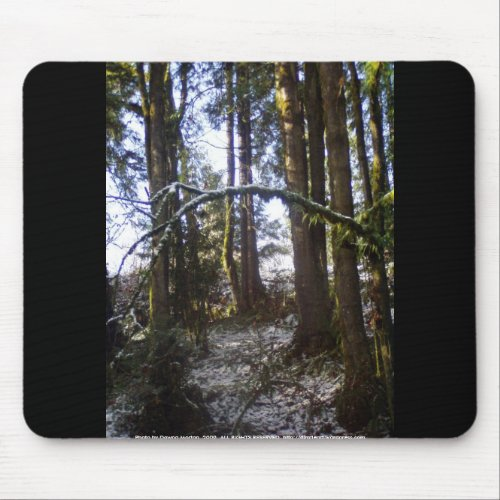 Forest Sun Rays in the Snow #32 mousepad