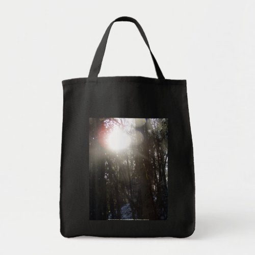 Forest Sun Rays in the Snow #50 bag
