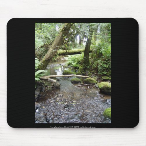 Fox Creek, Rainier, Oregon mousepad