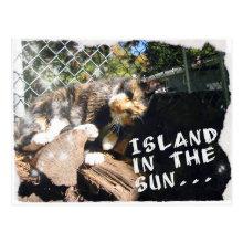 Freeta postcard
