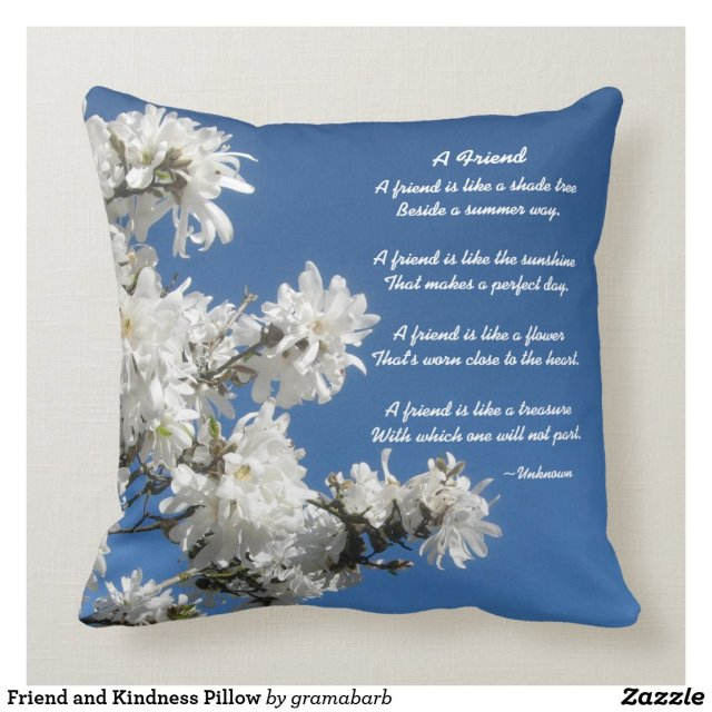 Friend and Kindness Pillow