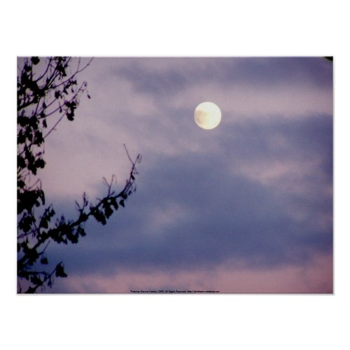 Full Moon in the Winter Sky print
