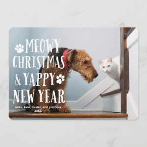 Funky Type Dog Cat | Holiday Photo Card