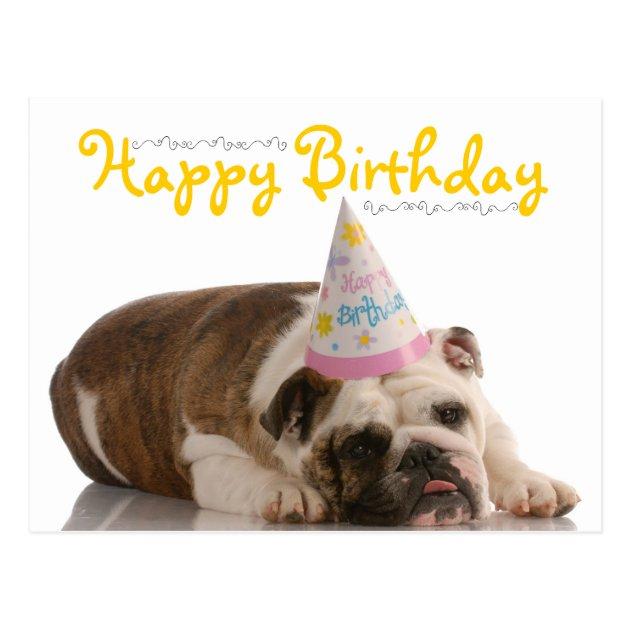 Funny Bulldog Birthday Postcard Zazzle Com