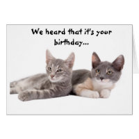 Funny Cat 'Give Us Tuna' Birthday Card