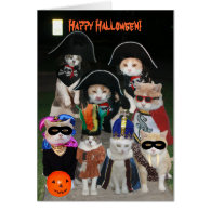 Funny Cats Prowling on Halloween Cards