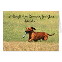 Funny Dachshund dog Happy Birthday card. Card