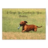Funny Dachshund dog Happy Birthday card. Card