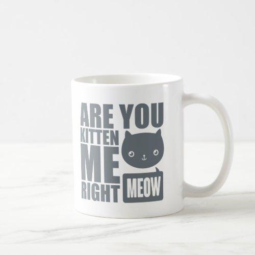 Funny Fun Are You Kitten Me Right Meow Mug