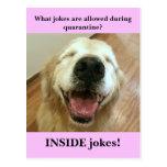 Funny Golden Retriever Quarantine Joke Meme Postcard