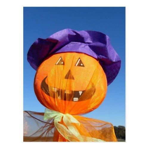 Funny Halloween Pumpkin Postcard