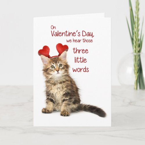 Funny Kitten Valentine Holiday Card