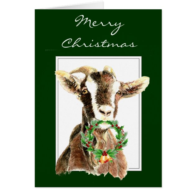 Funny Merry Christmas From Old Goat Animal Humor Card