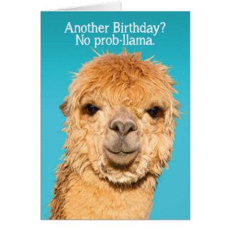 Alpaca Birthday Cards Zazzle
