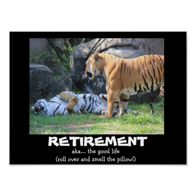 Funny Sleeping Tiger 16x12 RETIREMENT Poster Zazzle Com
