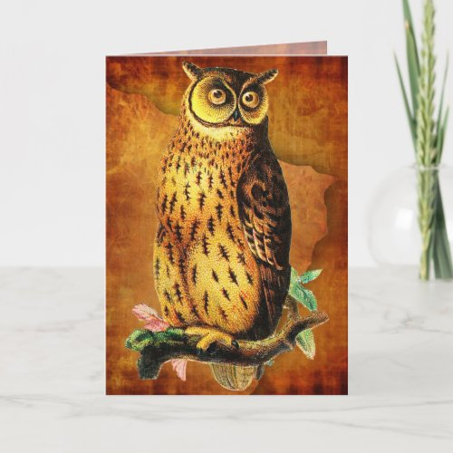 Funny Vintage Owl Birthday Card