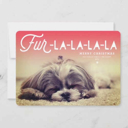 Fur La La La La Script Dog Lover Photo Funny Pet Holiday Card