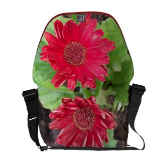 Gerbera Daisies Messenger Bag rickshawmessengerbag