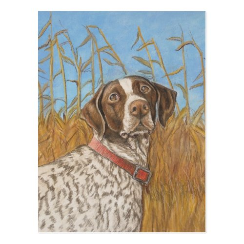 German Shorthair Pointer Dog Art Postcard