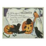 Ghost Crow Jack O Lantern Pumpkin Black Cat Postcard