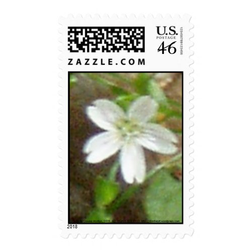 Gnat Creek Flowers #2 stamp